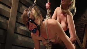 Blonde Mona Wales has a thing for hardcore sex in stockings